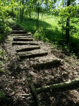Stammstufentreppe Naturerlebnisraum Nammen